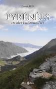 Pyrénées, escales buissonnières