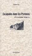 Escapades dans les Pyrénées d'un homme sérieux